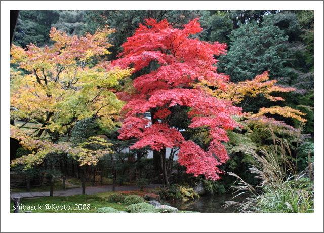 20081125_Kyoto-115_南禪院.jpg