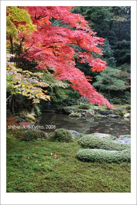20081125_Kyoto-116_南禪院.jpg