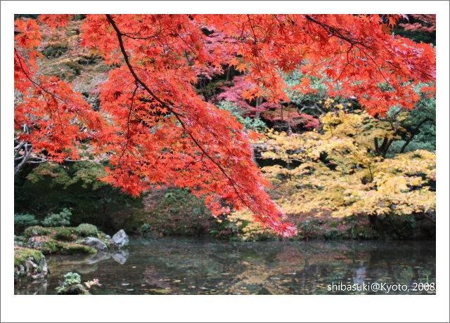 20081125_Kyoto-118_南禪院.jpg