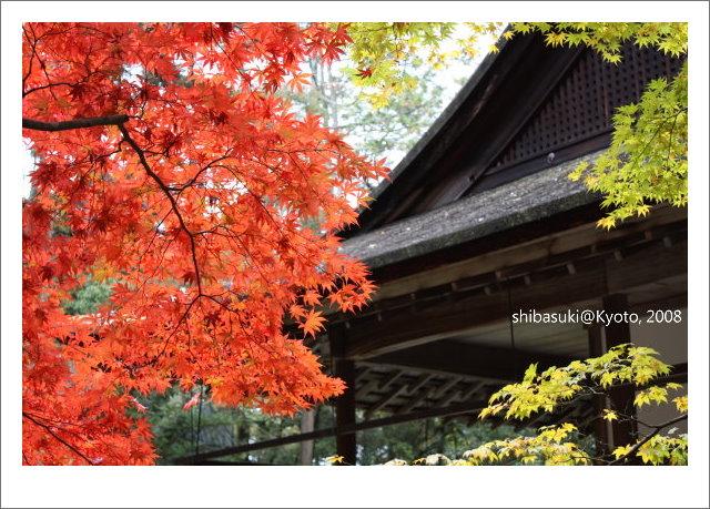 20081125_Kyoto-122_南禪院.jpg