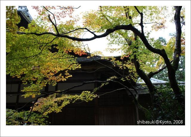 20081125_Kyoto-127_南禪院.jpg