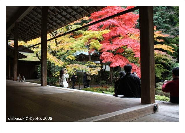 20081125_Kyoto-131_南禪院.jpg