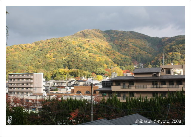 20081125_Kyoto-186_白川通.jpg