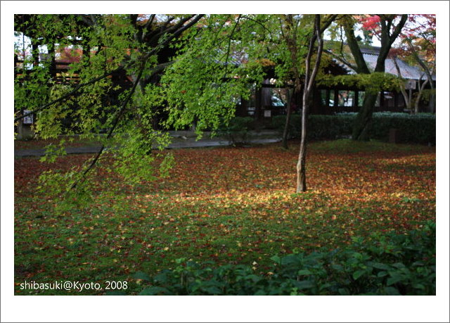 20081125_Kyoto-187_真如堂.jpg