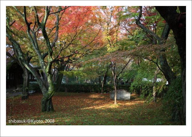 20081125_Kyoto-189_真如堂.jpg