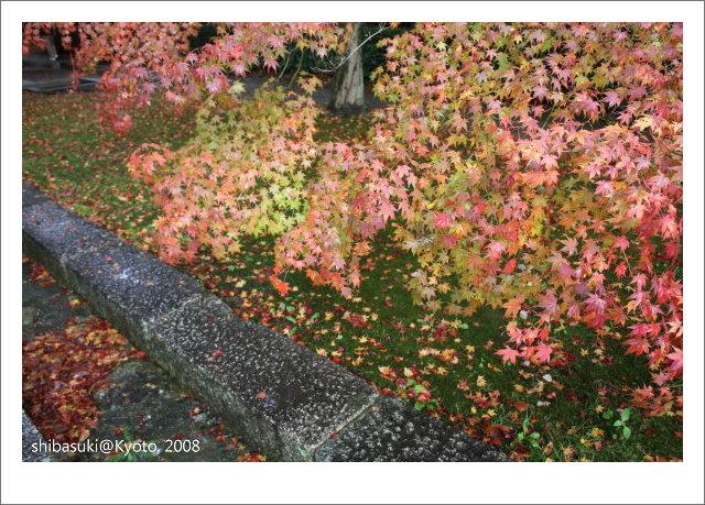 20081125_Kyoto-197_真如堂.jpg