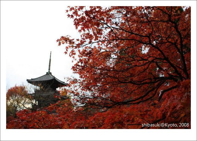 20081125_Kyoto-213_真如堂.jpg