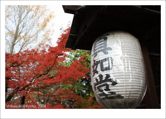 20081125_Kyoto-223_真如堂.jpg