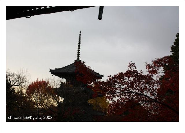 20081125_Kyoto-225_真如堂.jpg