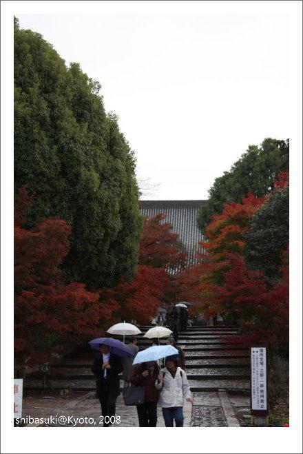 20081125_Kyoto-226_真如堂.jpg