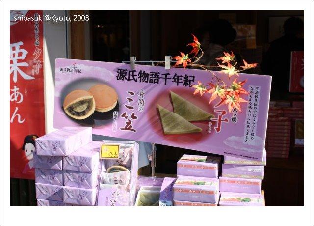 20081126_Kyoto-6_嵐山.JPG