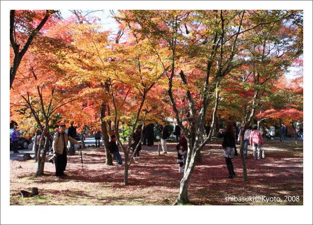 20081126_Kyoto-15_嵐山天龍寺.JPG