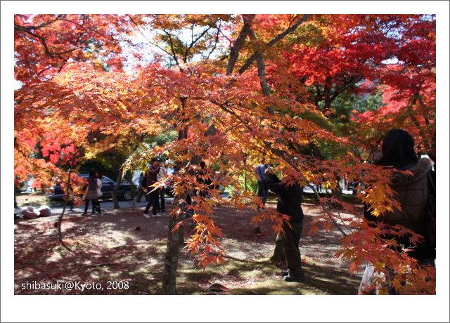 20081126_Kyoto-19_嵐山天龍寺.JPG