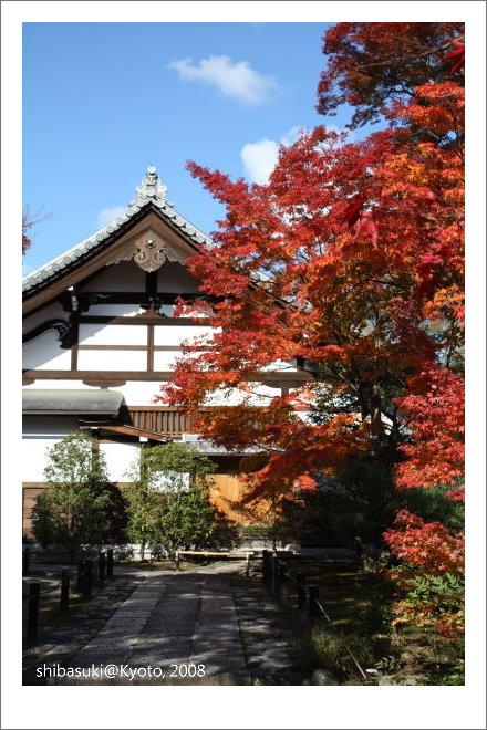 20081126_Kyoto-39_嵐山天龍寺.JPG