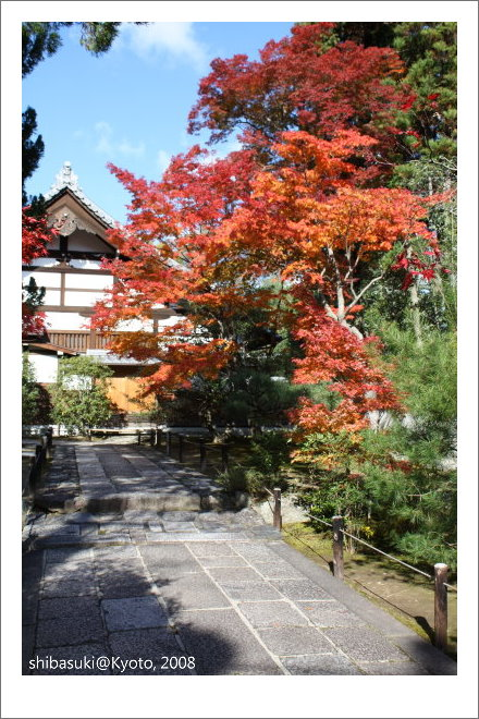 20081126_Kyoto-46_嵐山天龍寺.JPG
