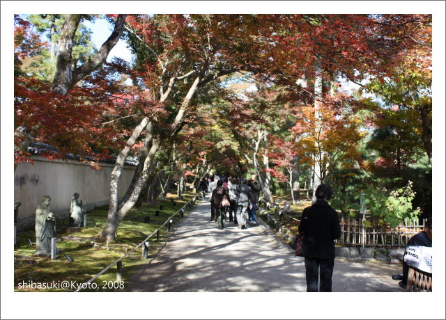 20081126_Kyoto-58_嵐山寶巖院.JPG