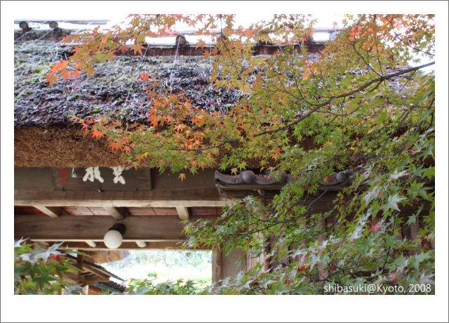 20081126_Kyoto-59_嵐山寶巖院.JPG