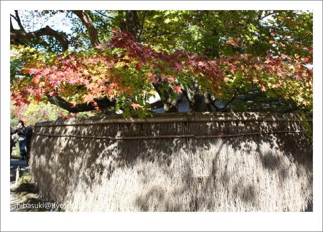 20081126_Kyoto-61_嵐山寶巖院.JPG