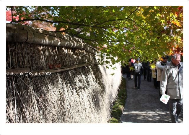 20081126_Kyoto-63_嵐山寶巖院.JPG