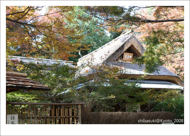 20081126_Kyoto-67_嵐山寶巖院.JPG