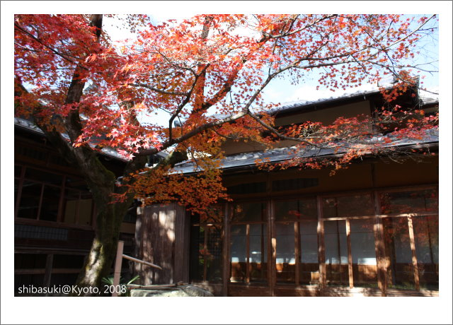 20081126_Kyoto-72_嵐山寶巖院.JPG