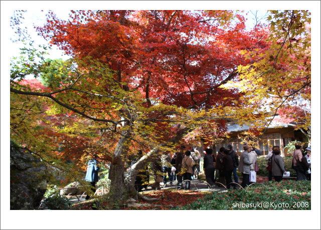 20081126_Kyoto-82_嵐山寶巖院.JPG