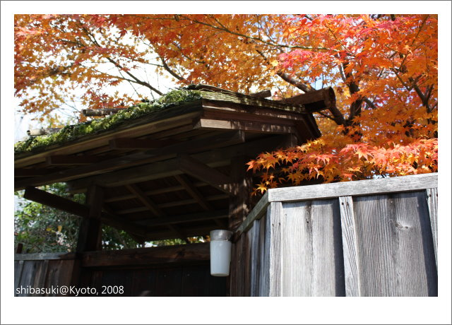 20081126_Kyoto-92_嵐山.JPG