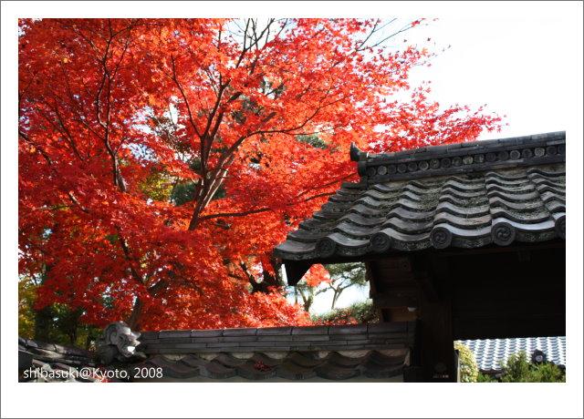 20081126_Kyoto-97_嵐山壽寧院(天龍寺).JPG