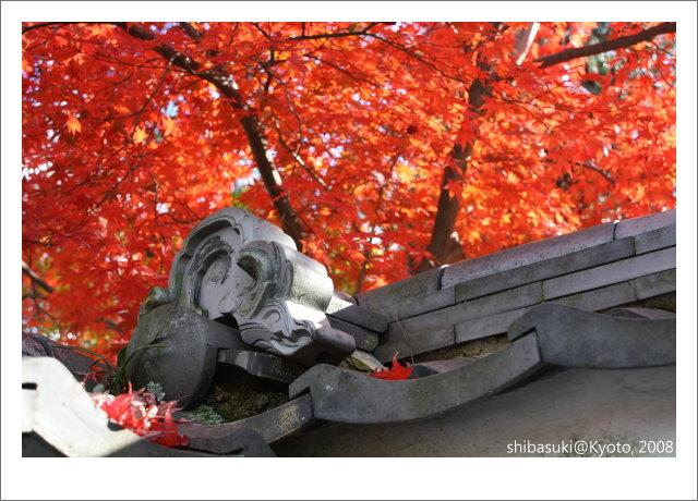 20081126_Kyoto-101_嵐山壽寧院(天龍寺).JPG