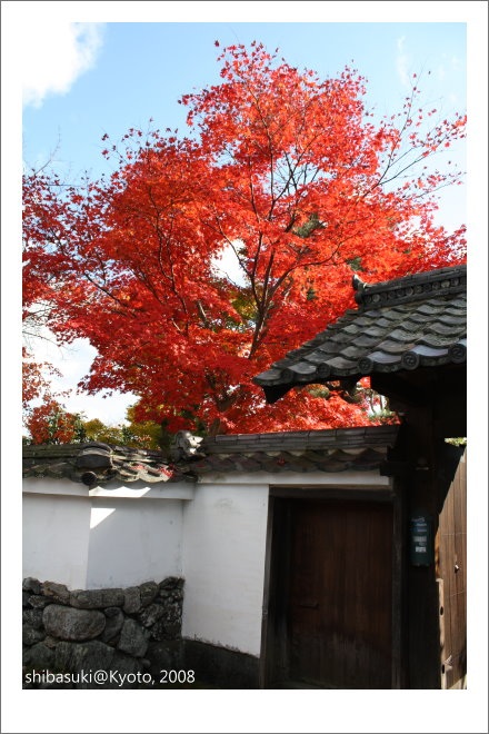 20081126_Kyoto-113_嵐山壽寧院(天龍寺).JPG