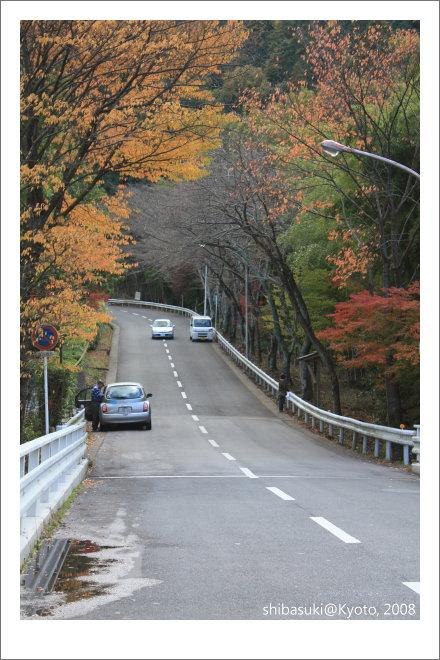 20081126_Kyoto-128_奧嵯峨(鳥居本).JPG