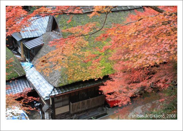 20081126_Kyoto-134_奧嵯峨(鳥居本).JPG