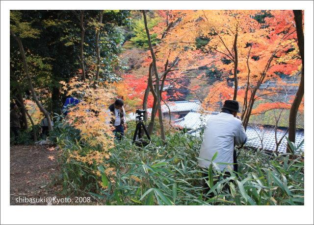 20081126_Kyoto-138_奧嵯峨(鳥居本).JPG