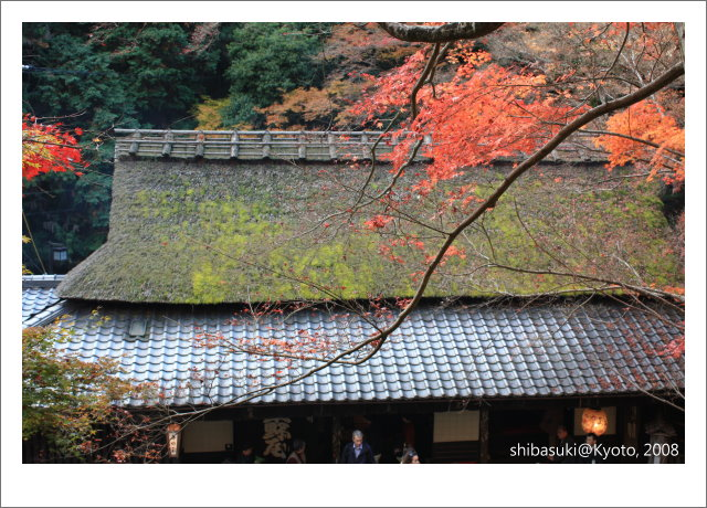 20081126_Kyoto-149_奧嵯峨(鳥居本).JPG