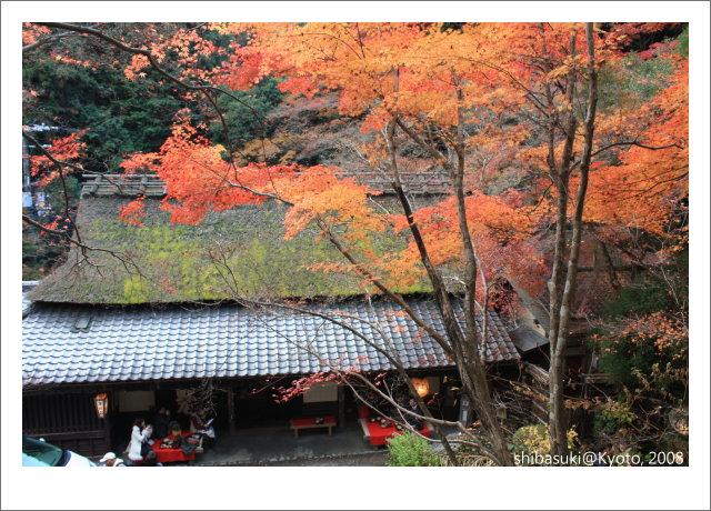20081126_Kyoto-153_奧嵯峨(鳥居本).JPG