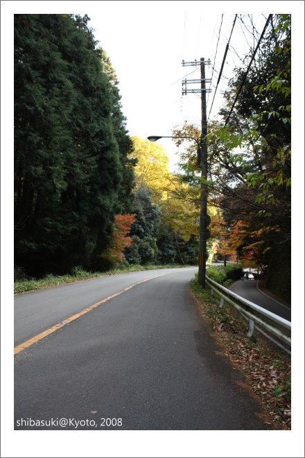 20081126_Kyoto-175_奧嵯峨(鳥居本).JPG