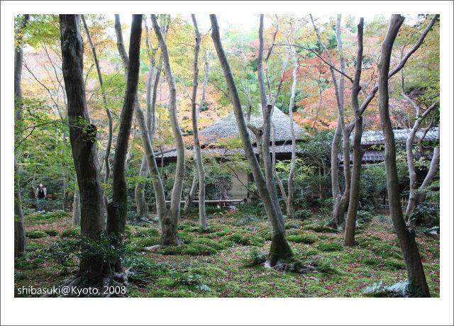 20081126_Kyoto-228_祇王寺.JPG