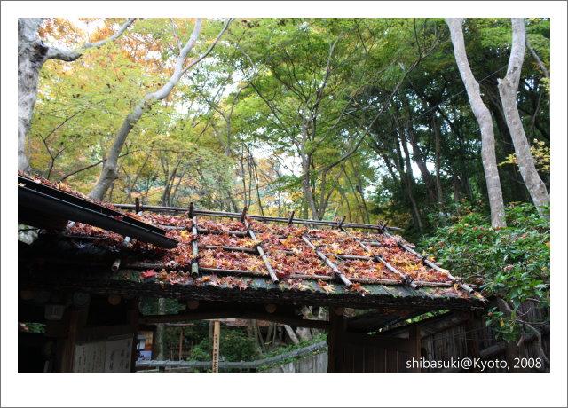 20081126_Kyoto-242_祇王寺.JPG