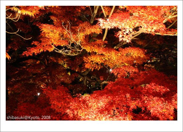 20081126_Kyoto-298_清水寺.JPG