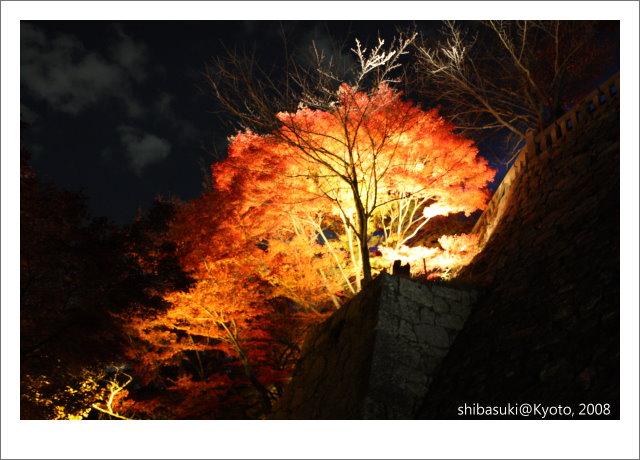 20081126_Kyoto-332_清水寺.JPG