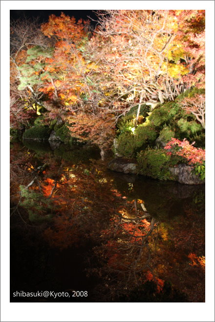 20081126_Kyoto-339_清水寺.JPG