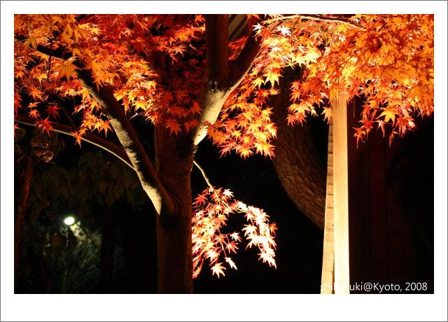 20081126_Kyoto-368_清水寺.JPG