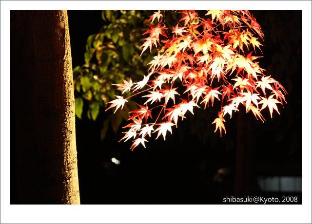 20081126_Kyoto-372_清水寺.JPG