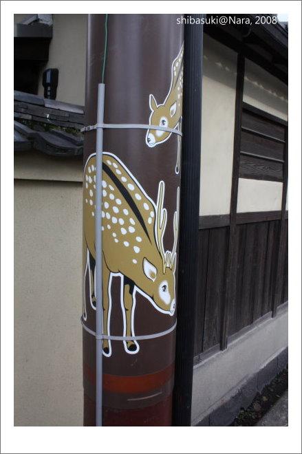 20081128_奈良-12.JPG