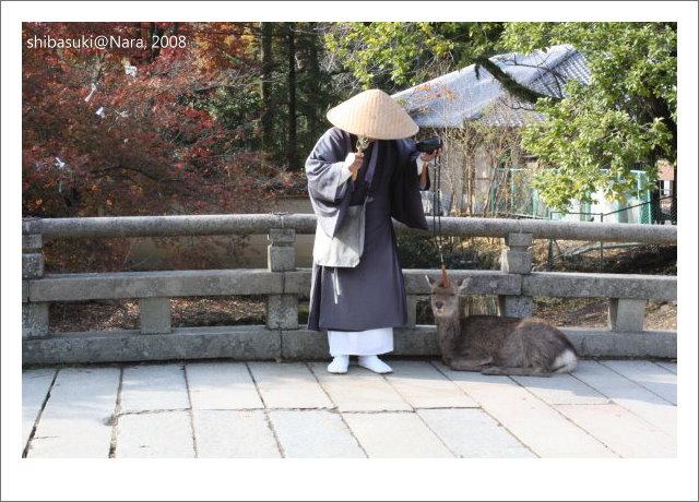 20081128_奈良-43_東大寺.JPG
