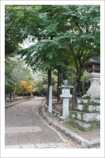 20081128_奈良-89_春日大社.JPG