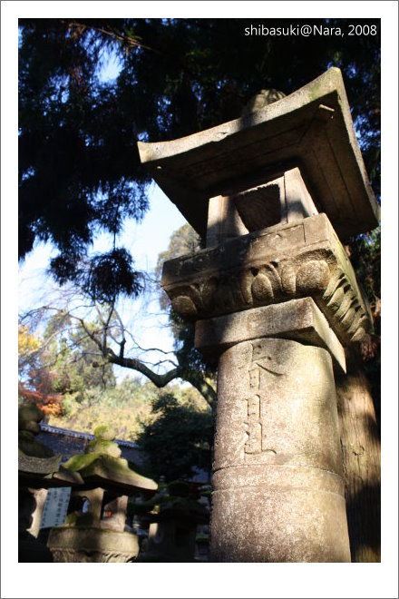 20081128_奈良-114_春日大社.JPG