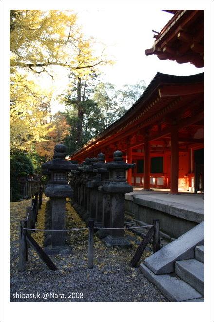 20081128_奈良-116_春日大社.JPG
