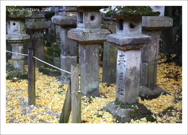 20081128_奈良-119_春日大社.JPG