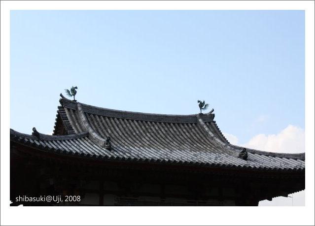 20081129_宇治-38_平等院.JPG